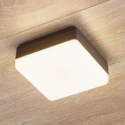 LED-loftlampe Thilo, IP54, grå, 16 cm