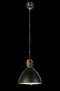 Loftlampe Eagle stor