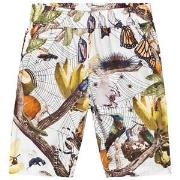 Molo Anthony Shorts Living Nature 92 cm (1,5-2 år)
